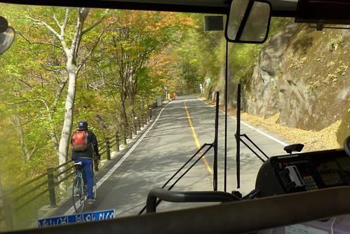 紅葉の時季に運行される旧道経由の「めがねバス」車窓