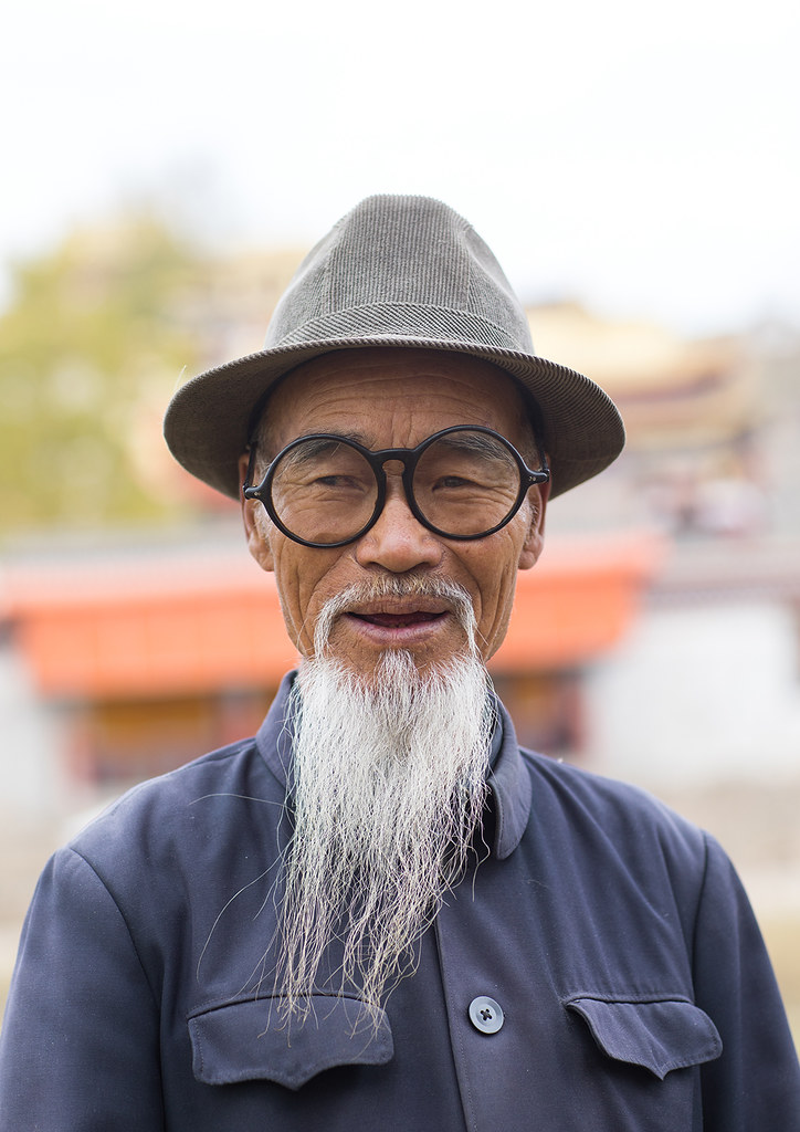 Groovy Portrait Of An Old Chinese Man With A Long White Beard In Flickr Schematic Wiring Diagrams Phreekkolirunnerswayorg
