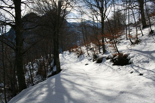alpe-cainallo-16