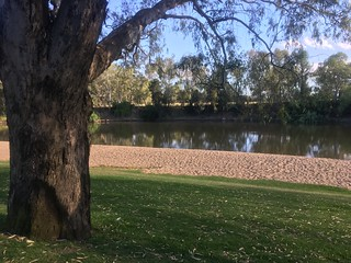 A Quiet Day at Wagga Beach | by cogdogblog