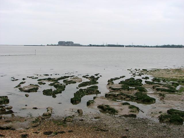 Muddy islands in the Blackwater Estuary