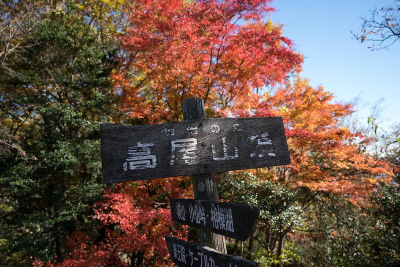 紅葉の高尾山