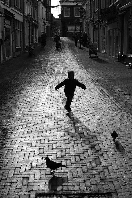 The Boy and the Pigeons