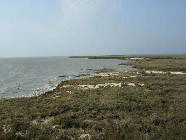 The coast near Burnham-on-Crouch