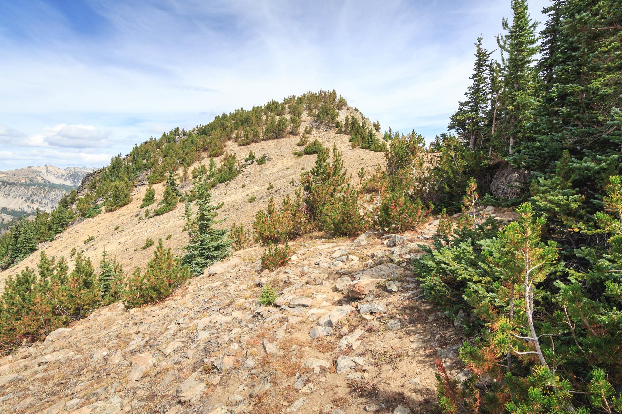 North Navarre Peak summit up ahead