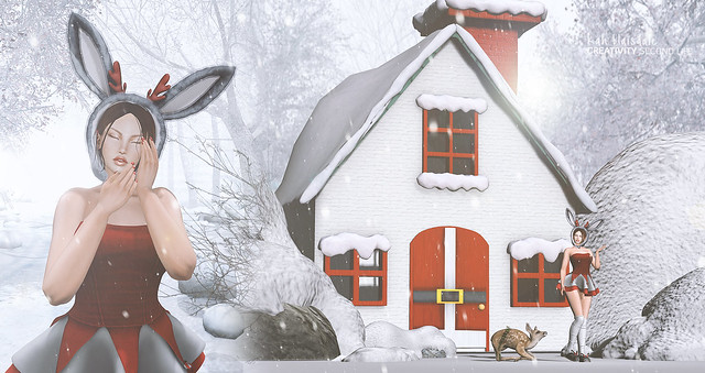 •705 MERRY CHRISTMAS HOUSE