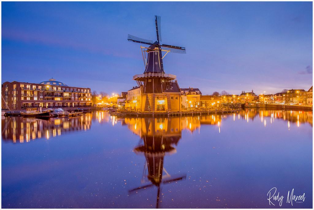 Purple Pool Haarlem.Postcard Greetings From Haarlem The Classic Dutch City Of