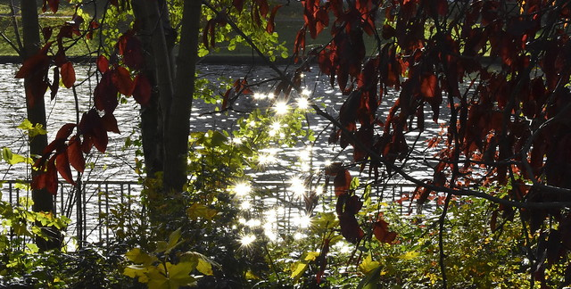 Autumnal Angelus