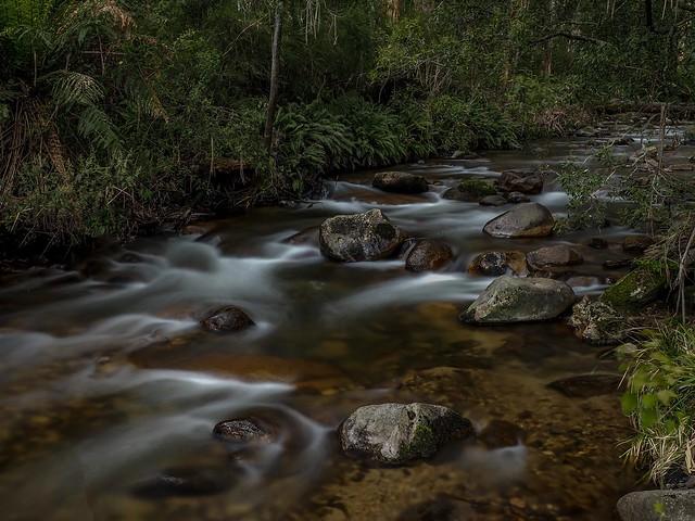 Delatite River, Mirimbah.
