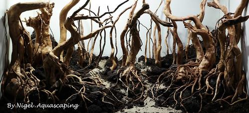 hardscape 1 by nigel aquascaping forest   by nigel_kh