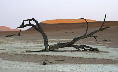 Namib-Naukluft NP, Dead Vlei