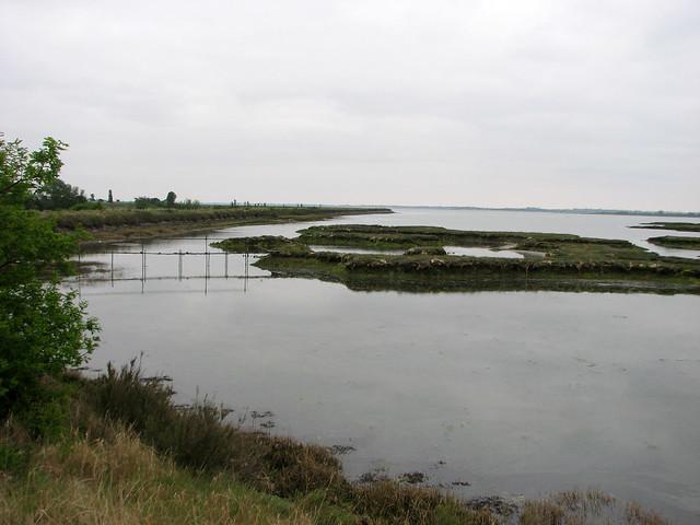 Near Decoy Point, Heybridge