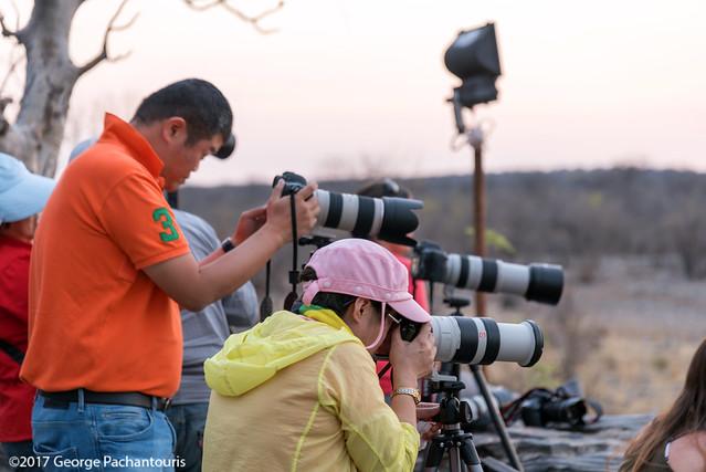Chinese tourists with super cameras, Halali restcamp, Etosh NP
