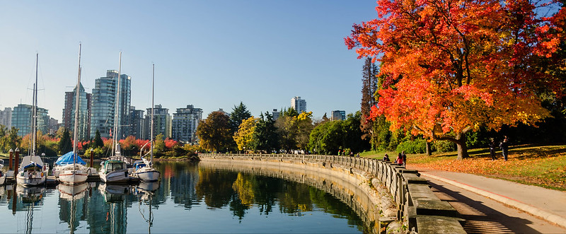 Stanley Park Autumn