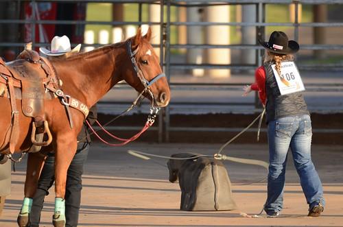 georgiahighschoolrodeoassociation ghsra rodeo perryga georgianationalfairgroundsagricenter roper cowgirl horse cowboyhat