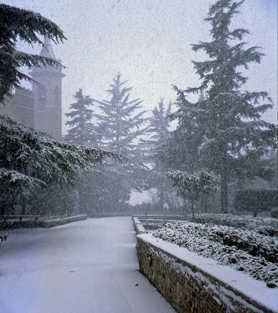 Snowfall - Nevicata