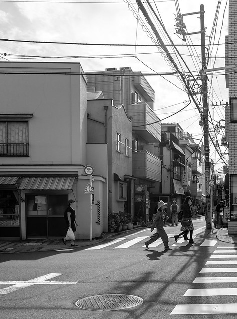 Yanesen Neighborhood and Yanaka Cemetery-169