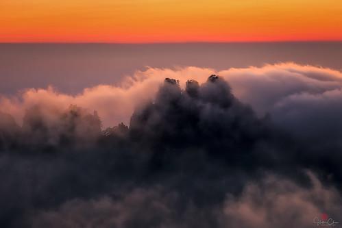 autumn anhuiprovince dwarfpines sunset seaofclouds mountains yellowmountains trees huangshannationalpark peaks china clouds huangshanshi anhuisheng cn