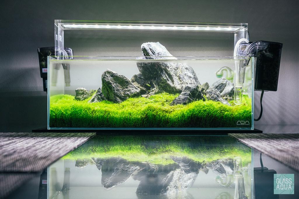Ada 45 F Low Shallow Tank Click Here Glassaqua Com Flickr