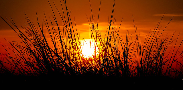 Sunset in the sand dunes