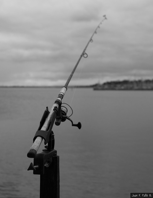 """""""Many men go fishing all of their lives without knowing that it is not fish they are after."""" -Henry David Thoreau"""