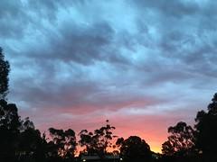 Sunset at Finns Reserve