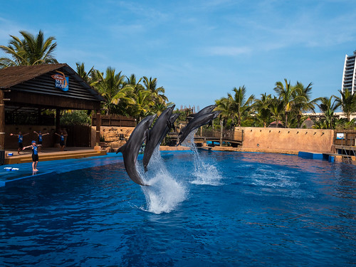 uShaka Marine World, Durban, KwaZulu Natal, South Africa | by South African Tourism