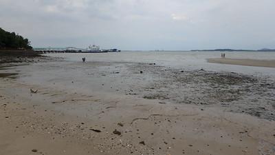 Sandy shores at Changi