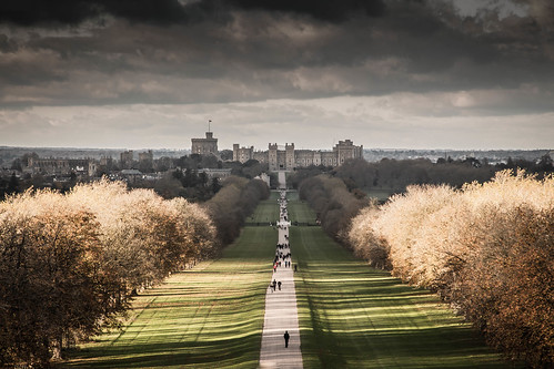 windsor castle royal uk autumn otoño longwalk november