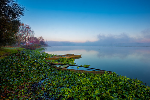 jacintos lake landscape pateiradefermentelos sky tranquility blue boat flowers fog lagoon nature orange portugal sunrise tree water