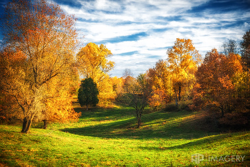 view leaves scene country color landscape field backroads sky autumn rural kentucky fall orage usa