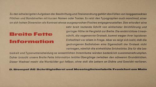 BreiteFette-Specimen_09