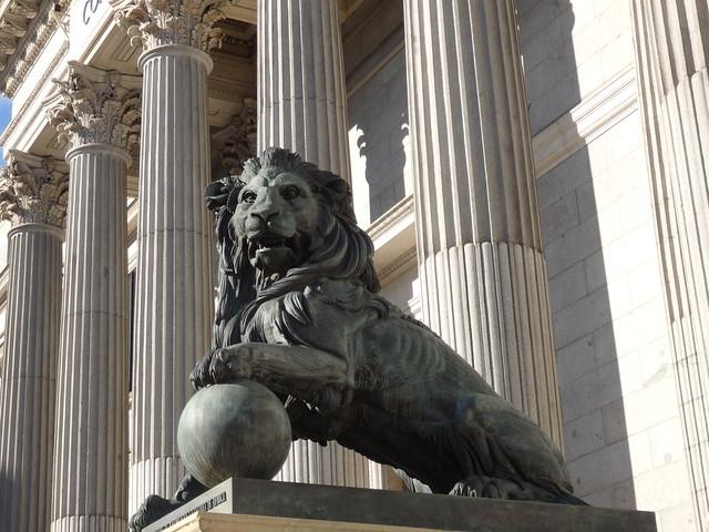 An imposing lion
