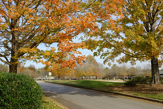 Fall Road | by ChristianRock