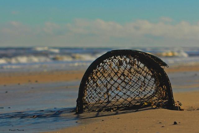 Série : Piègé au sable / Trapped in the sand (2-3)