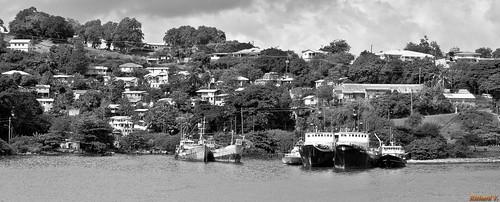 castries saintelucie lc caraïbes stlucia saintlucia carabbean antilles sus sonyphotographing île noiretblanc