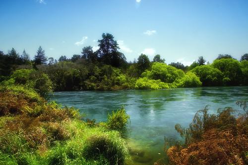 waikatoriver waikato newzealand water river sky blue green nature outside