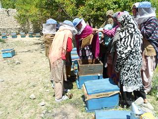 CED for Women Empowerment through Honey Bee Farming24