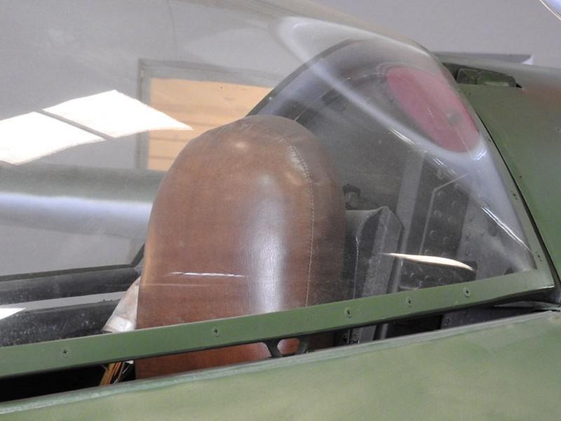 Heinkel I162るオオサンショウウオ6