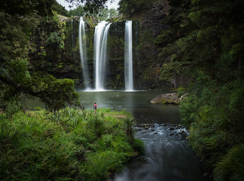 hateariver newzealand northisland whangarei whangareifalls basaltcliff forest hiker landscape longexposure nativebush person river walker waterfall