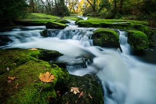 Millstone Rapids | by Bryn Tassell