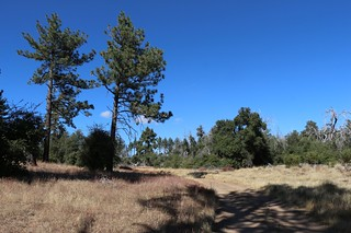 196 Hiking along the East Mesa Fire Road as we head toward the Harvey Moore Trail | by _JFR_