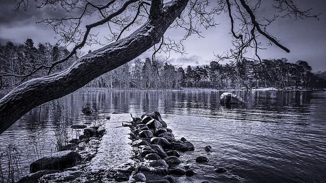 A View from Lauttasaari