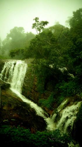 india kerala tamilnadu sonyslta58 munnar nature green plants water hill hills station fog