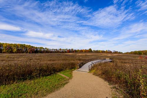 afsnikkor1635mmf4vr d750 dajewski longwoodgardens nikond750 gdajewski autumn fx fullframe landscape meadow