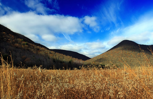 Lycoming Creek Valley (2) | by Nicholas_T
