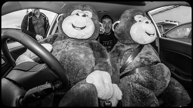 Car Fun.