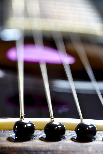 acoustic guitar | Macro Mondays | Music Instrument