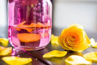 Yellow rose and petals in pink jar | by wuestenigel