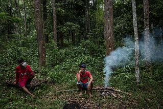 GCS-Tenure Project in Lampung | by CIFOR
